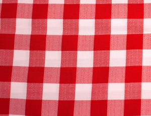 Solid Check - Red & White