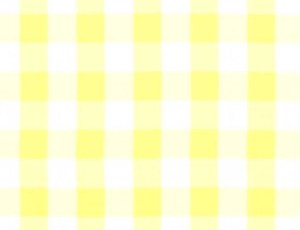 Solid Check - Yellow & White