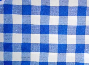 Solid Check -Blue & White