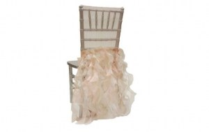 Willow Organza Chair Cap Champagne 2