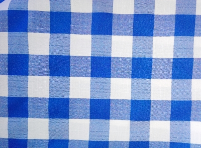 Solid Blue & White Check