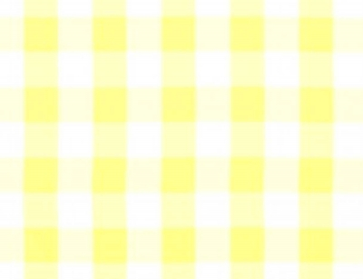 Solid Yellow & White Check